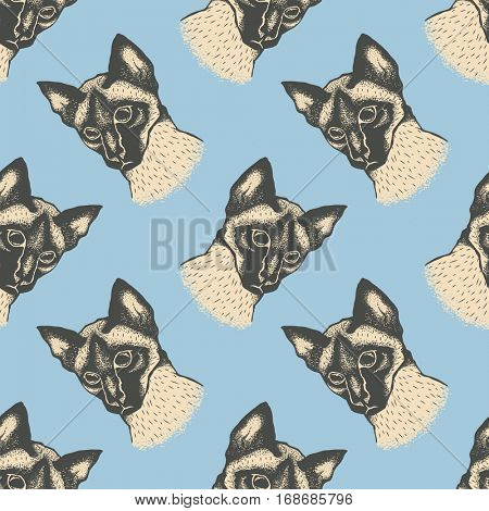Seamless vector pattern with cat. Illustration of cute siamese cat