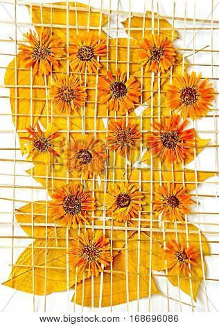Maple Leaves Chrysanthemum Flowers Under The Grate Of Straw Oil Draw Painting, Photo Manipulation