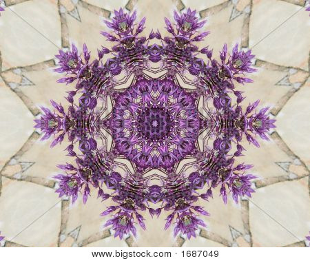Purple And Cream Kaleidoscope