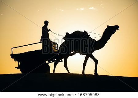 Rajasthan travel background - camel silhouette in dunes of Thar desert on sunset. Jaisalmer, Rajasthan, India