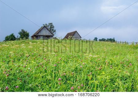 grass field in the mountains, gorgeous spring day