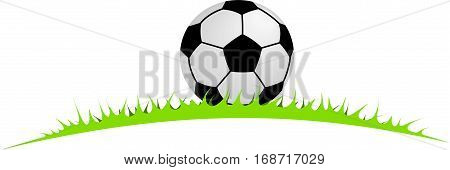 soccer ball lying in the grass for your use