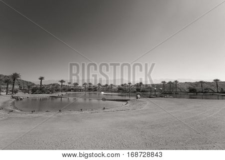The Timna Lake - Oasis in Timna park - Vintage soft sepia style