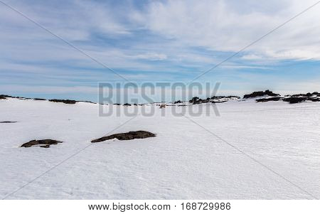 Five snowmobiles appear on the remote horizon for an extreme adventure on the wide open surface of a vast glacier