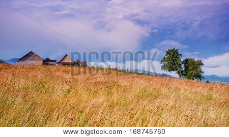 Beautiful sunny day is in mountain landscape.