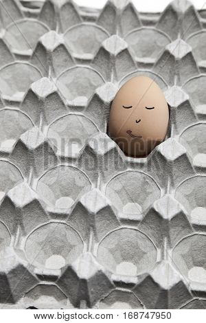 Funny face drawn on brown egg in empty carton