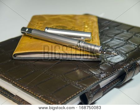 The metallic ball pen on notebook closeup