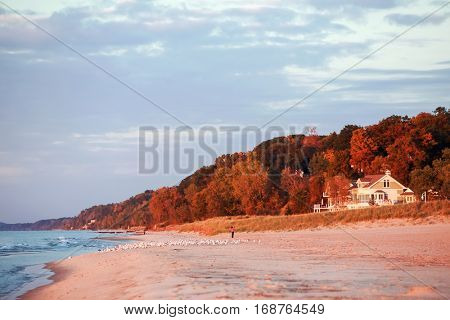 Glowing trees and beach house during autumn at sunset