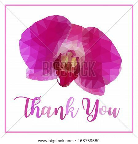 Low poly of pink purple orchid flower isolated on white background with word Thank you