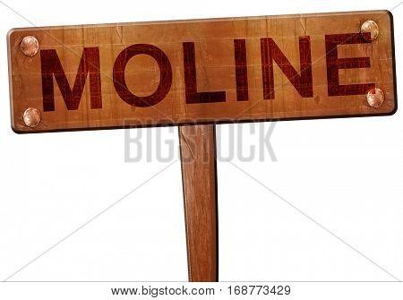 moline road sign, 3D rendering