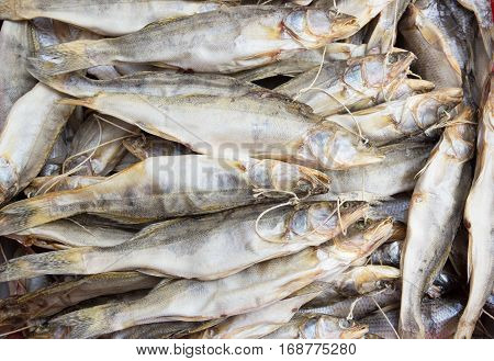 A lot of dried pike perch. Background of dried fish