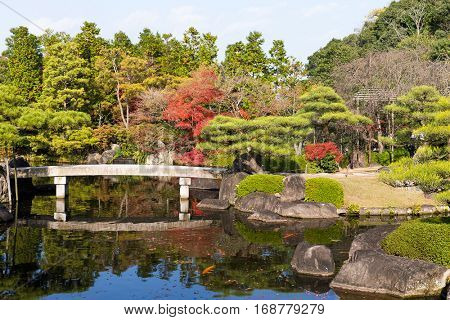 Japanese garden with red foliage