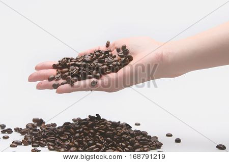 Woman taking coffe beans with her hand
