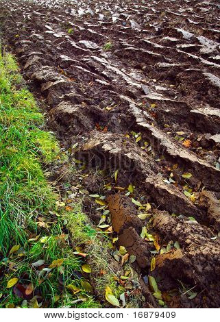 Newly ploughed field close up - autumny agriculture work.