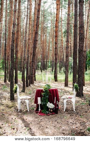 Weeding decor. Decorated table served for two with two white forged chairs in pine forest. Decoration with marsala fabric, candles, candlesticks, wine bottles, flowers and grass. Bohemian style.