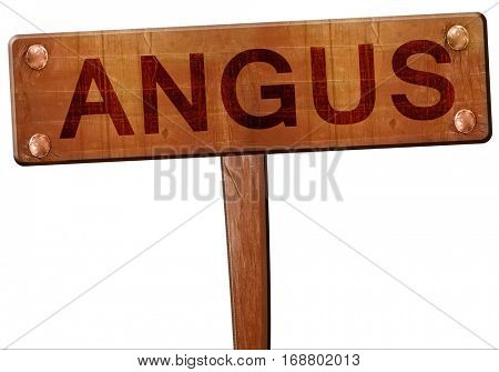 Angus road sign, 3D rendering