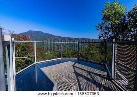 View Point Of Canopy Walk Way At Queen Sirikit Botanic Garden