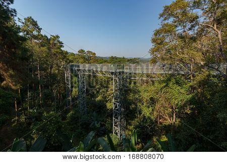 The Canopy Walkway, Queen Sirikit Botanic Garden