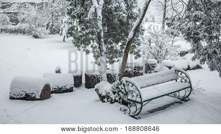 Heap Of Sawn Pine Wood Logs Covered With Snow