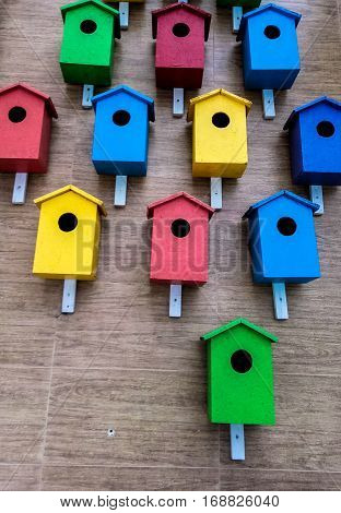 many colored birdfeeder on the wall extremely