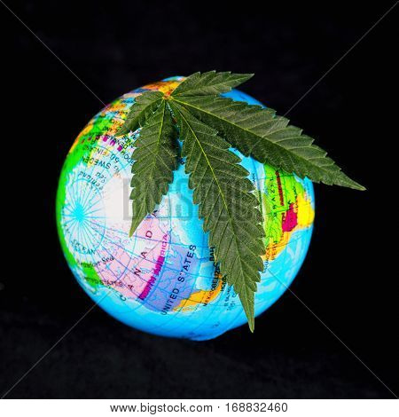 Medical marijuana concept with cannabis leaf and earth globe isolated on black background