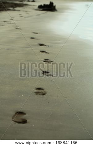 Adult Human Footprints Or Foot Steps Lead From Sandcastle