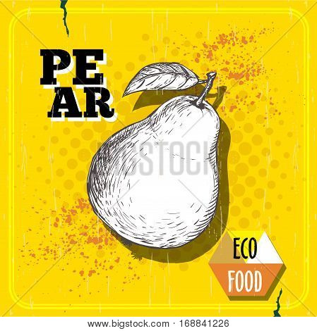 Hand drawn pear. Vintage sketch style organic pear fruit poster. Eco food illustration on yellow half tone background