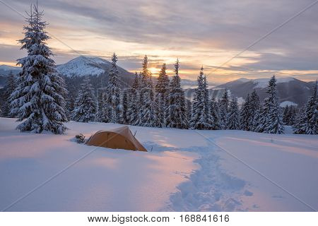 Yellow Tent Covered With Frost Are In Winter Mountains