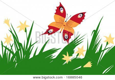 butterfly in herb poster