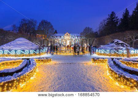 GDANSK, POLAND - JANUARY 8, 2017: Beautiful winter illumination of 500 000 light bulbs at the Park Oliwski in Gdansk, Poland. Park Oliwski is the biggest heritage park in Gdansk with area of 11,3 ha.