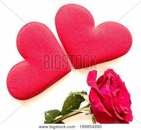 Valentine's day love and sweetest concept, rose flower and red hearts.