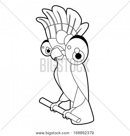 Cute funny cartoon style coloring bird illustration. Cockatoo