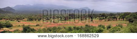 Panorama of 8 frames Tsavo National Park in Kenya
