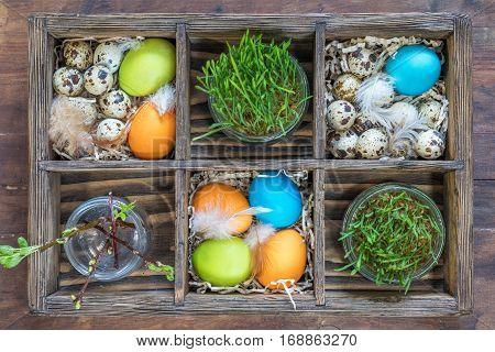 Colorful Chicken Eggs Quail Eggs Germinated Wheat