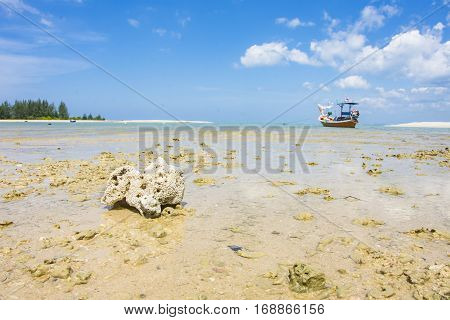 Coral And Fishing Boat On The Beach Seascape And Cloud In Blue Sky At Asia Beach