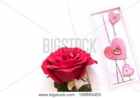 Valentines day love and sweetest concept, rose and gard