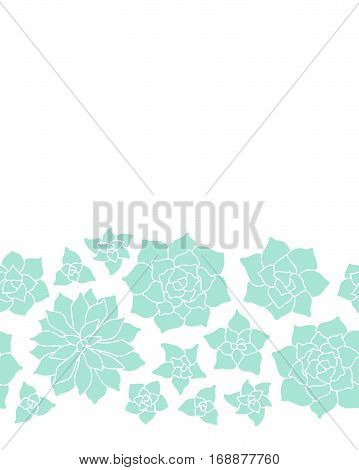 Teal Succulent Plant Seamless Border On White Background