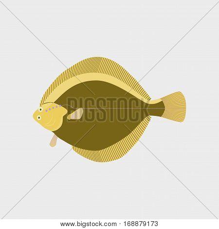 Vector illustration in flat style fish flatfish