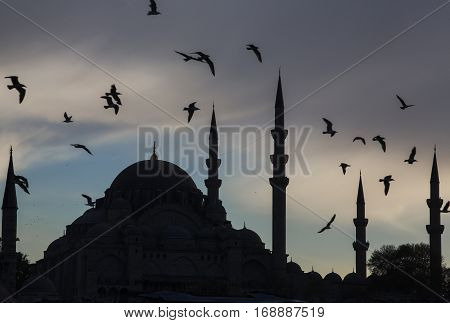 Istanbul - Birds fly above the ancient mosque in the troubled night sky