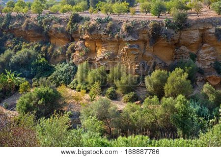 Gardens in the Valley of the Temples in Agrigento, Italy
