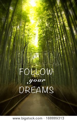 Inspirational quote follow your dream on a picture of a bamboo forest in Japan