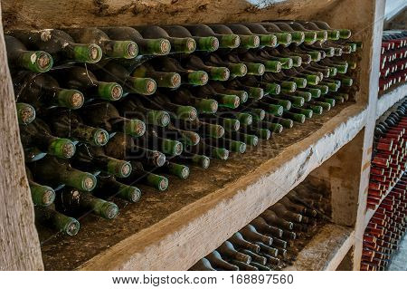 a lot of old wine bottles in the web in the wine cellar
