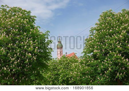famous bavarian andechs cloister amongst blooming chestnut trees