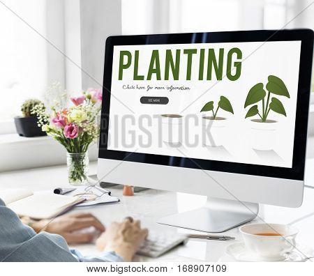 Planting Gardening Flower Farm Global