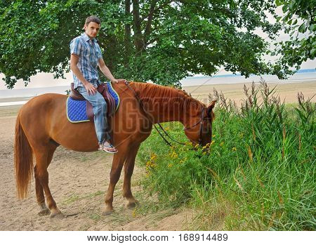 Man riding on a brown horse