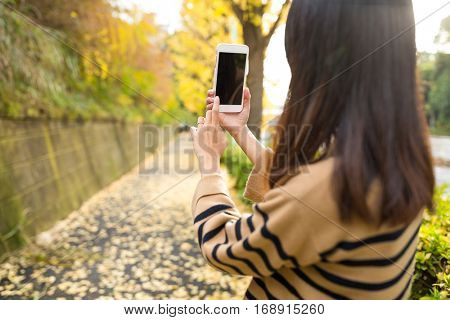 Woman capture the landscape by using mobile phone