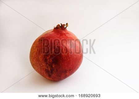 Pomegranate Red Citric Fruit