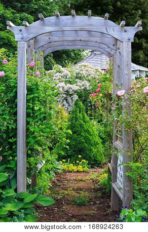 Rose arbor in a country garden.