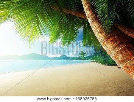 sunset on beach Anse Takamaka, Mahe island, Seychelles