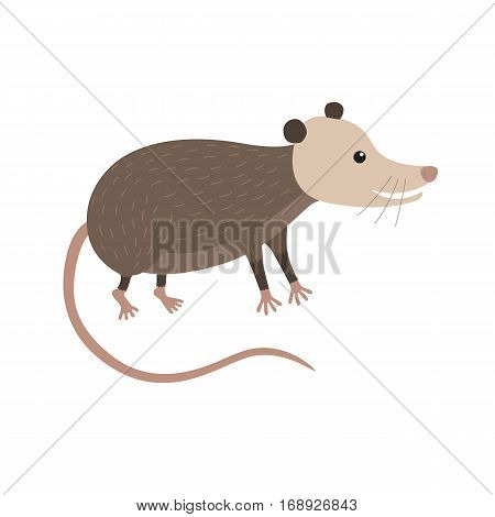 Clipart illustration of cute cartoon opossum vector illustration for children isolated on white background
